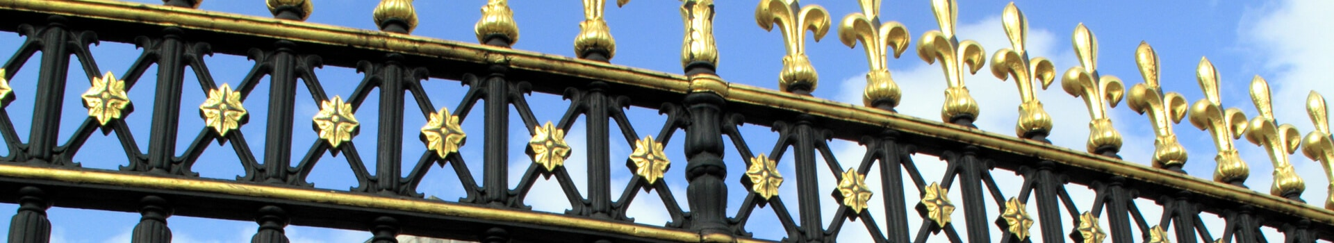 Wrought Iron Fence Type