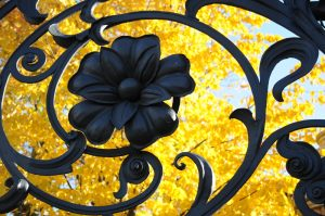 commercial wrought iron fencing in New Orleans - Big Easy Fences