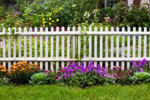 Wood Fence from home - Bige asy fences